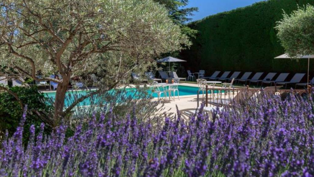 Piscine Extérieure Auberge de Cassagne Hôtel 5 étoiles Avignon